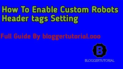How to turn on Custom robots header tags Setting