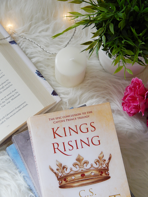 King's Rising No Spoiler Book Review | sprinkledpages