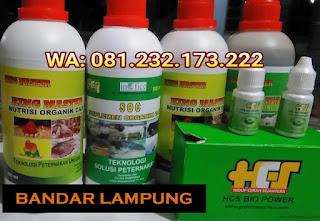 Jual SOC HCS, KINGMASTER, BIOPOWER Siap Kirim Bandar Lampung