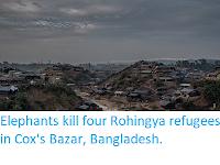 https://sciencythoughts.blogspot.com/2017/10/elephants-kill-four-rohingya-refugees.html