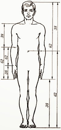 Fitness and Health: The History of the Golden Ratio and