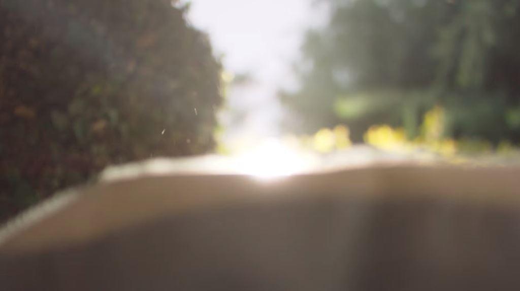 Testo poesia Mutti Ode al Pomodoro pubblicità 2016, di Pablo Neruda
