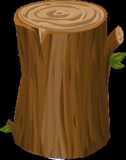 O tronco de uma árvore é um corpo - O lado bom da química