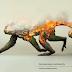 Doğanın tahribatı üzerine etkileyici bir çalışma