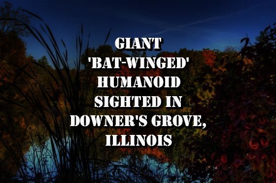 Giant 'Bat-Winged' Humanoid Sighted in Downer's Grove, Illinois