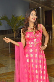 Sindhu Shivarama in Pink Ethnic Anarkali Dress 02.JPG
