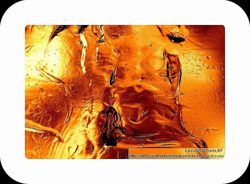 Foto Abstracta 3022  Una brecha de vida en el desierto - A gap of life in the desert