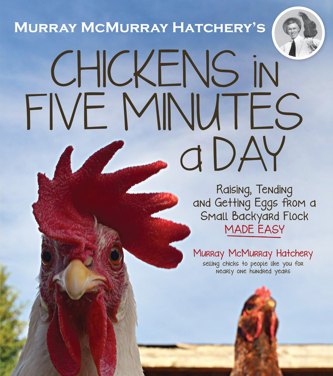 Pam S Backyard Chickens Book Review Chickens In Five Minutes A Day