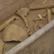 В Риме обнаружены останки христианских мучеников III века