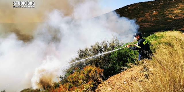 Πελοπόννησος: Πυρκαγιές σε Κορινθία και Λακωνία