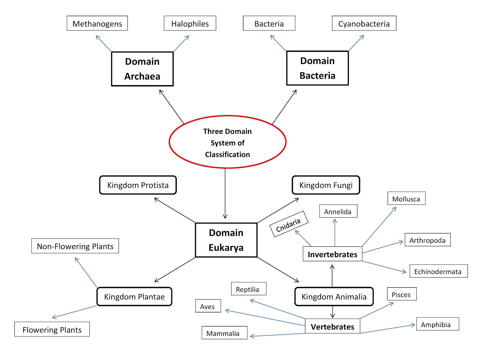 Concept Map Bacteria.Nisal Anjula Blogs Concept Map Of The Three Domain System Of