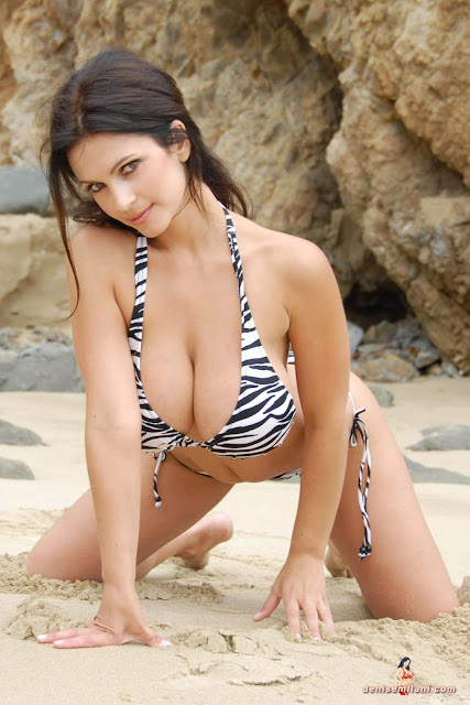 Denise Milani Beach Zebra HD Sexy Photoshoot Hot Photo 2