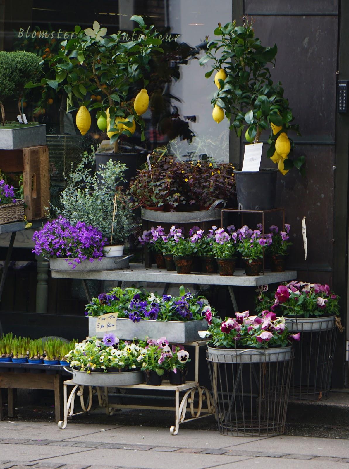 kukkakauppa, kevätkukat