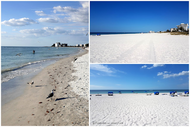 Florida - St. Pete Beach {EamK on Tour}