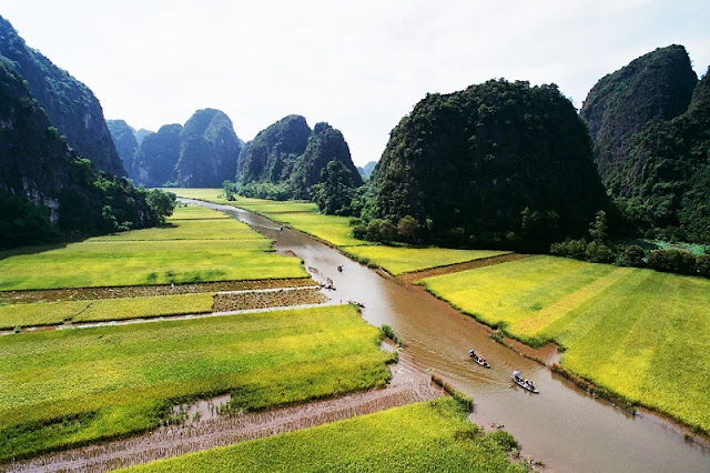 Surprised by the picturesque rice fields look like pictures in Tam Coc 2