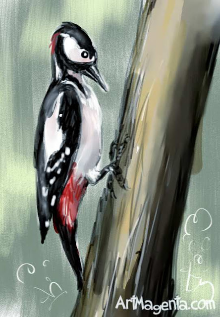 Great Spotted Woodpecker sketch painting. Bird art drawing by illustrator Artmagenta