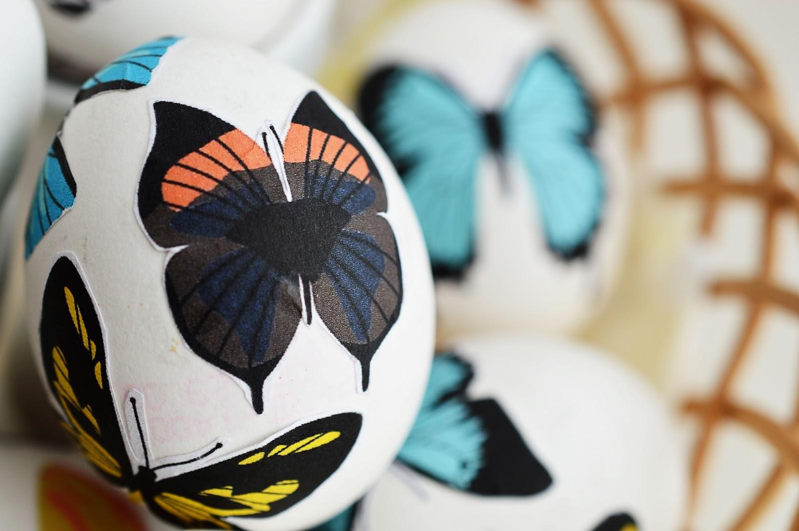 DIY Decoupage Easter Eggs | Butterfly Anatomy | Motte's Blog