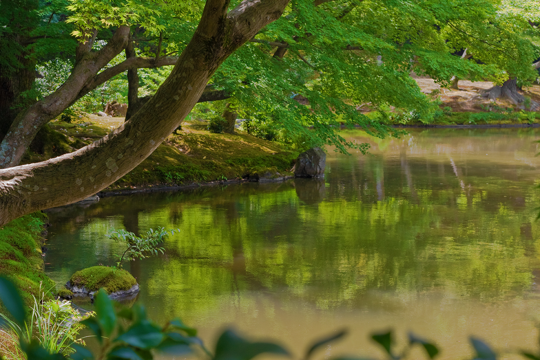 Green Pond, Kinkaku-ji, Kyoto