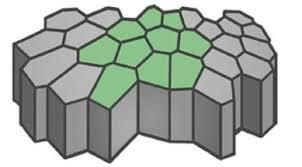 İşte Yeni Geometrik Şekil: Scutoıd