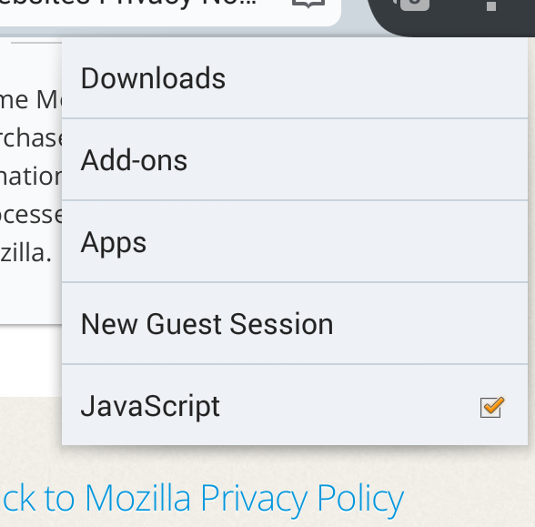 Screenshot of JavaScript toggle in the Tools menu