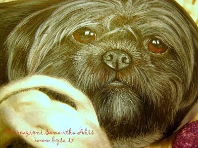 sassi dipinti cani costo prezzo