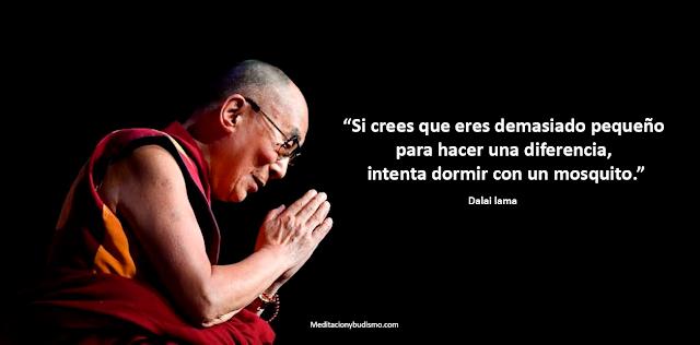 Estos son los ladrones de tu felicidad según Dalai lama