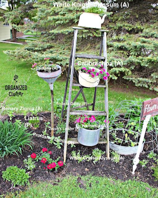 What to Plant in a Junk Garden organizedclutter.net