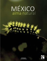 México Alma Natural   Big, thick, coffee table style book with 263 pages featuring my travel pictures from across Mexico, focusing on nature.   From the desert of Baja California to El Triunfo Biosphere Reserve, the home of the mythical Quetzal bird, images run full page and are accompanied by poetic texts by Alejandra Uhthoff in English and Spanish. If interested in a copy contact me at chicosanchezphoto@gmail.com