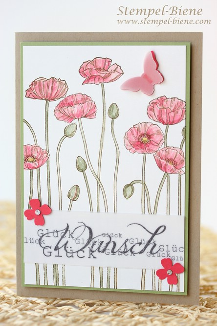 Stampin Up Glückwunschkarte basteln, Stampin Up Pleasant Poppies, Stampin Up Itty Bitty Akzente, Stampin Up Sammelbestellung