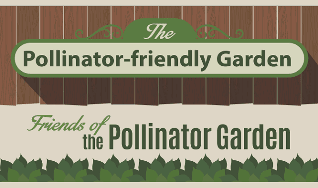 The Pollinator-Friendly Garden