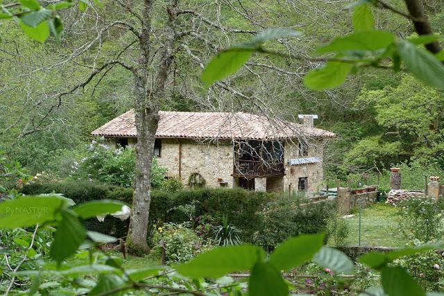 El Muñizon - Foces del Río Infierno - Asturias