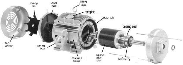 Three phase induction motors engineering essay