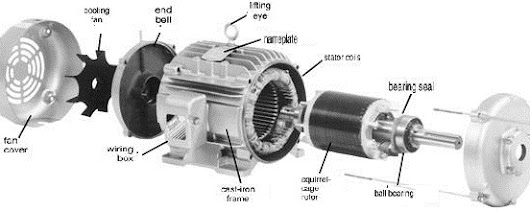 Three-Phase Induction Motor Construction | Electrical Engineering World