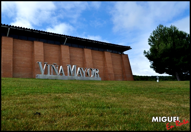 Bodegas-Viña-Mayor