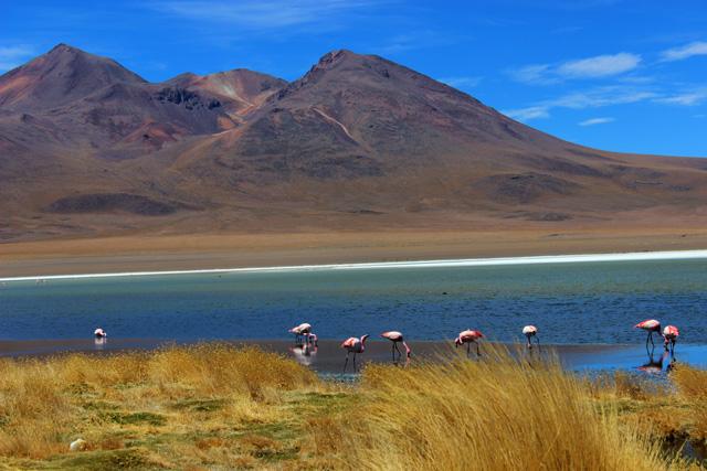 La Laguna Cañapa