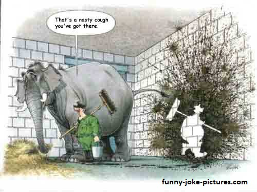 Old Favourite Silly Elephant Joke Cartoon