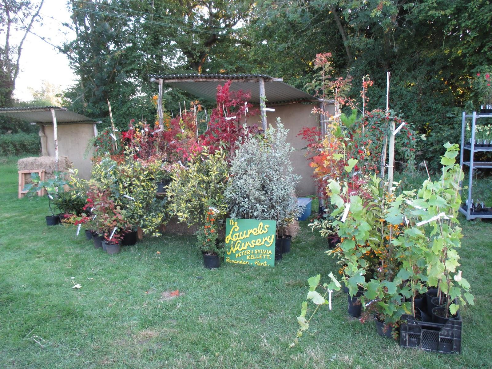 Dixter Diary Day 18 Rotary Botanical Gardens