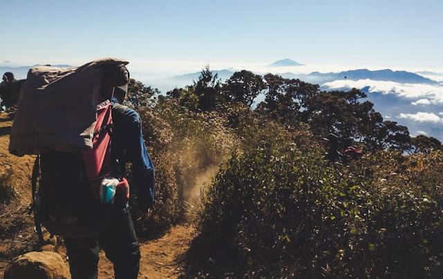 Mendaki Gunung Cikuray - Backpacker VIP Masuk Hutan (Bagian 1)