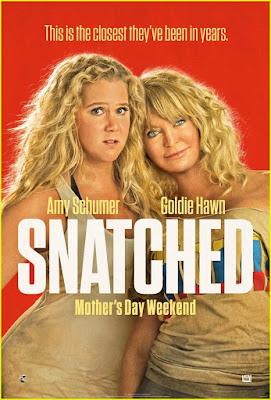 Snatched [2017] [NTSC/DVDR- Custom BD] Ingles, Español Latino