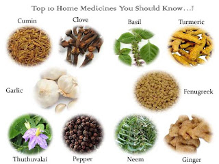 Top 10 Home Medicines