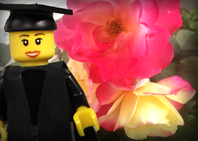Gift Ideas for Grads - Flowers