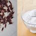 Coloque esta mistura nos cantos da sua casa e elimine todas as baratas de forma natural sem usar inceticidas tóxicos
