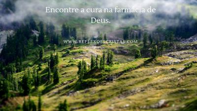 Busque pelas perfeitas criações de Deus