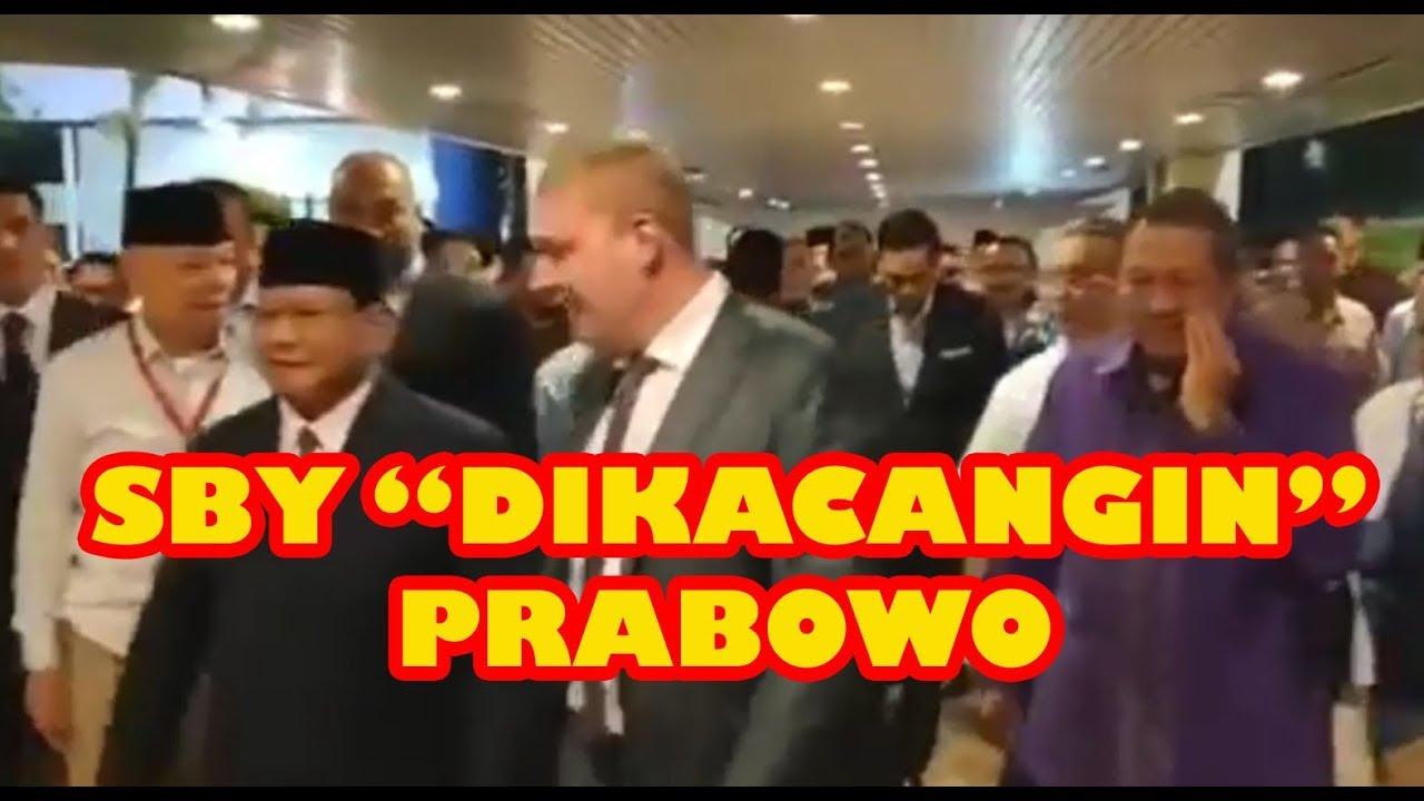 Citaten Politiek Luar Negeri : Sby tahan rasa malu di kacangin prabowo menyapa konsultan politik