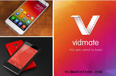 free download vidmate