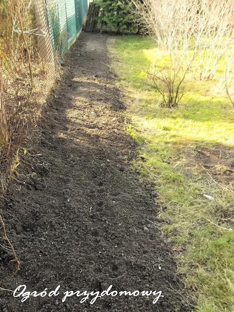 Pierwszy Dzień Lata, ogród przydomowy