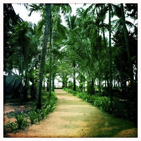 Arsha Yoga ashram path towards beach