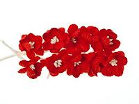 https://www.essy-floresy.pl/pl/p/Kwiat-wisni%2C-czerwony/190