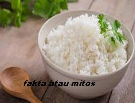 https://faktaataumitosyo.blogspot.com/2018/03/fakta-atau-mitos-makan-nasi-harus-dihabiskan-kalau-tidak-nasinya-bakal-nagis.html