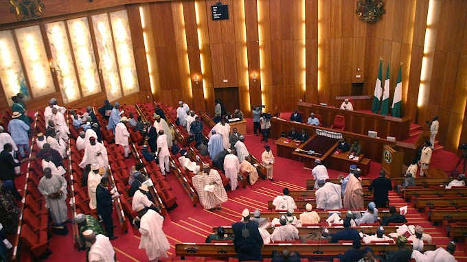 N'Assembly passes 2019 budget, increases it by N86bn